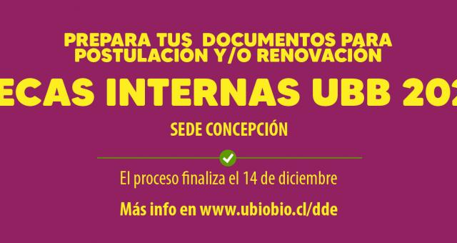 Postulación / Renovación Becas Internas, Proceso de Acreditación Socioeconómica 2021
