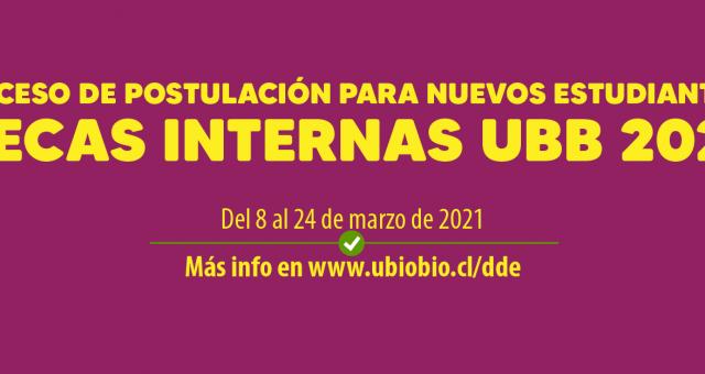 Postulación Becas Internas UBB para Nuevos Estudiantes, Proceso de Acreditación Socioeconómica 2021