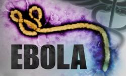 1408498895000-ebola-virus